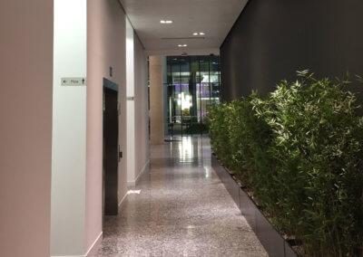 Lift Lobby & Entrance Redecoration 6