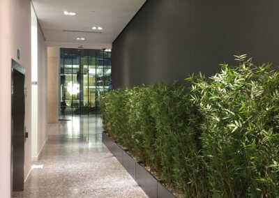 Lift Lobby & Entrance Redecoration 5